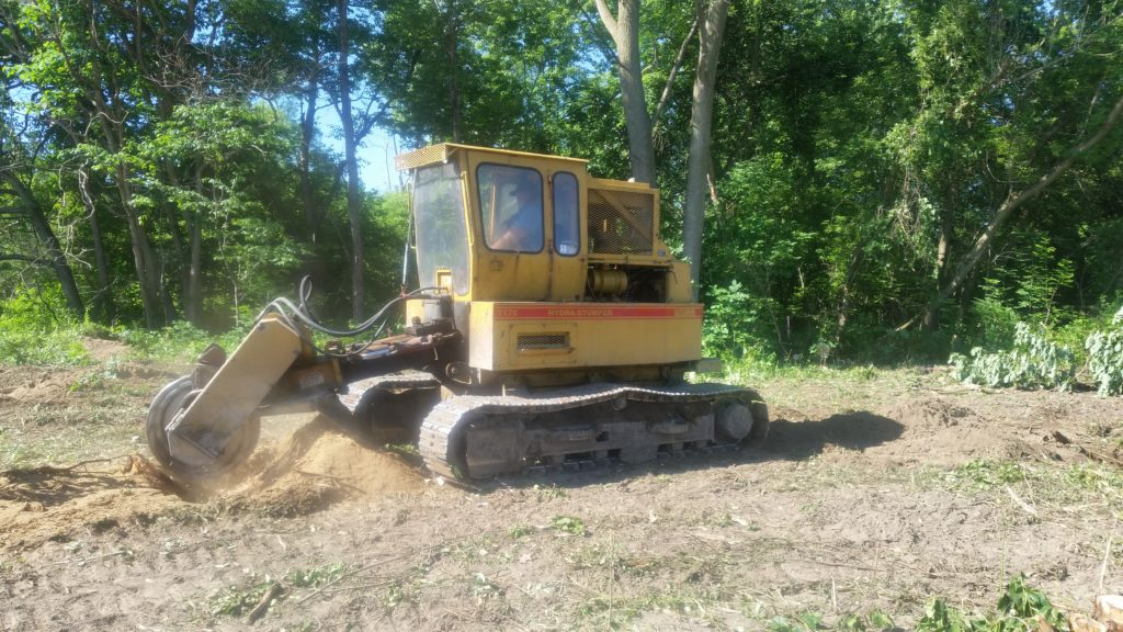 Stump Grinder West Michigan Tree Services