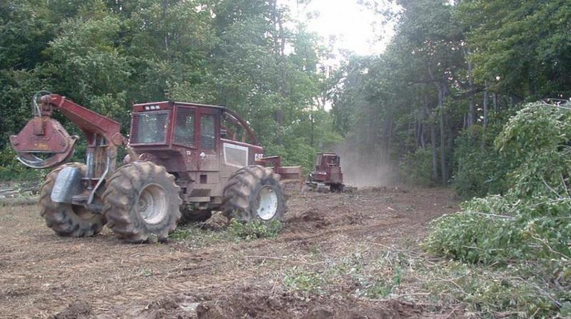 Land Clearing Safe Tree Removals West Michigan Tree Services